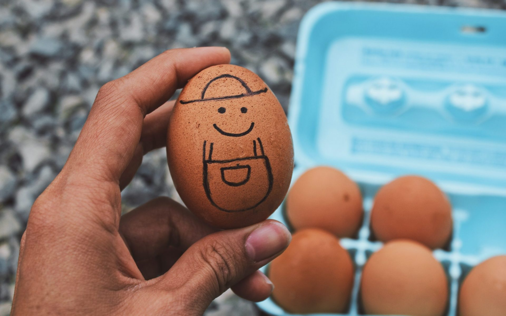 person holding brown egg